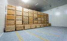 Системы хранения картофеля